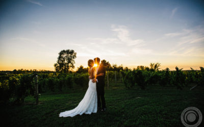 Seth + Clare // Ciccone Vineyard Wedding